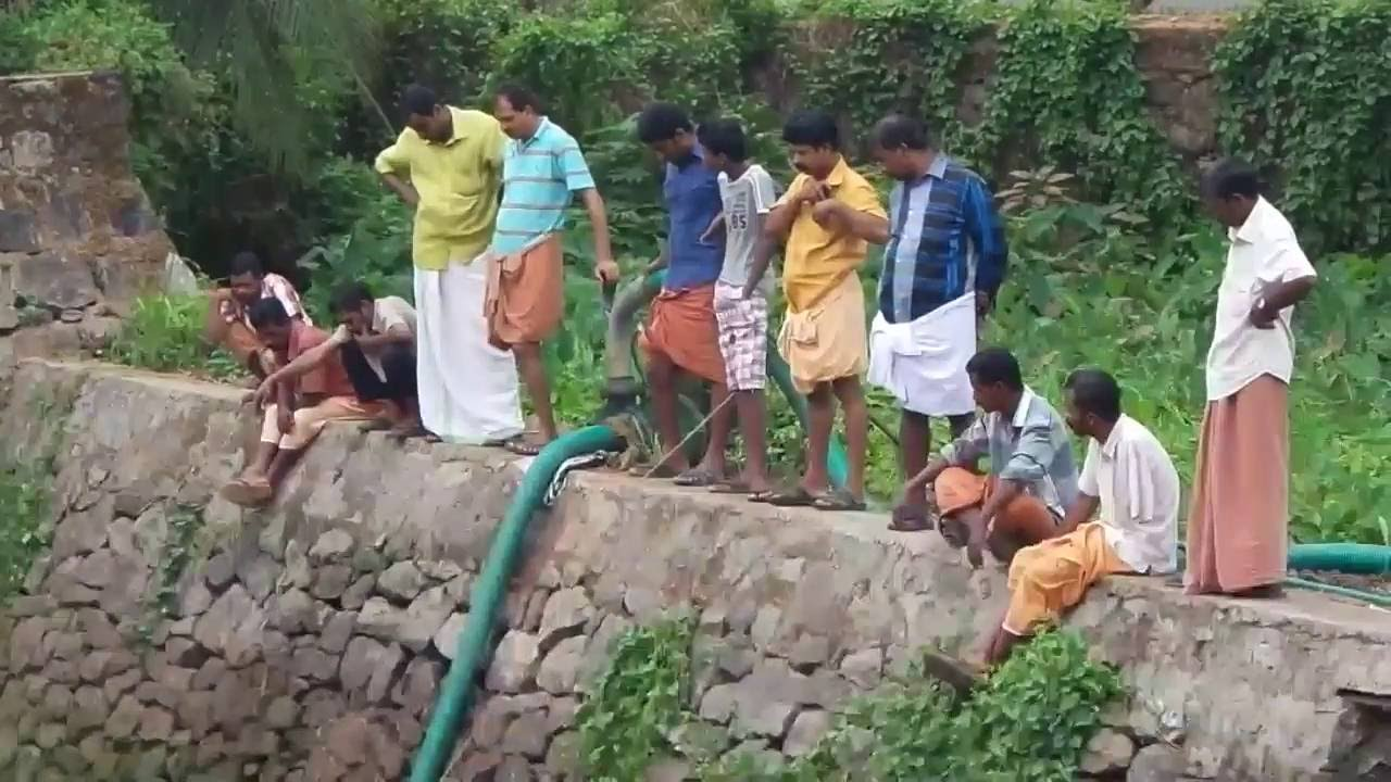 Kerala village people catching fish in ponds dry season for Amazon fish ponds