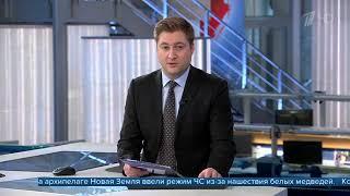 видео: Наархипелаге Новая Земля из-за нашествия белых медведей введен режим ЧС