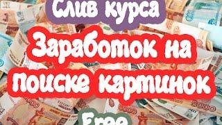 Заработок на поиске картинок. Слив курса. 5600 рублей в день
