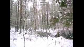 видео Мглинский партизанский отряд