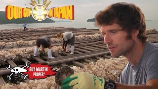Guy goes Oyster farming in Japan | Guy Martin Proper