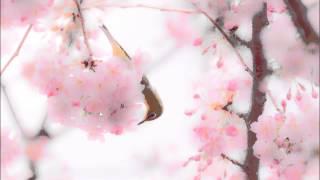グローフェ: ミシシッピ組曲第2曲:ハックルベリー・フィン[ナクソス・...