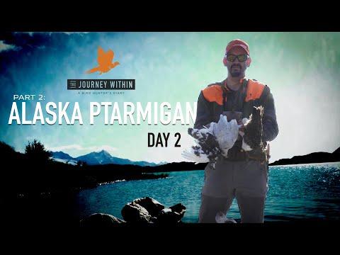 Alaska Ptarmigan Day 2: The Journey Within - A Bird Hunter's Diary |  Mark V Peterson