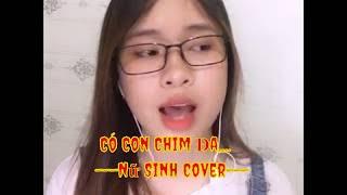 Tiếng Hát Chim Đa Đa - Quang Linh (nữ Sinh Cover) | vèo tv