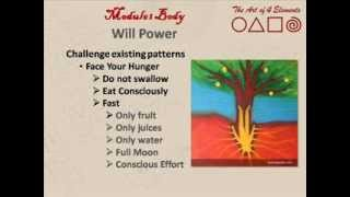 Mindful Eating and Willpower