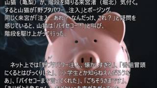 ドラマ「怪盗山猫」でゴールデンコンビが復活!日テレの企画で亀梨和也...