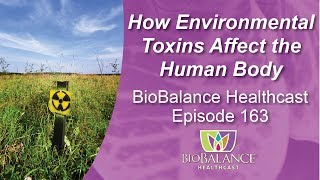 How Environmental Toxins Affect the Human Body