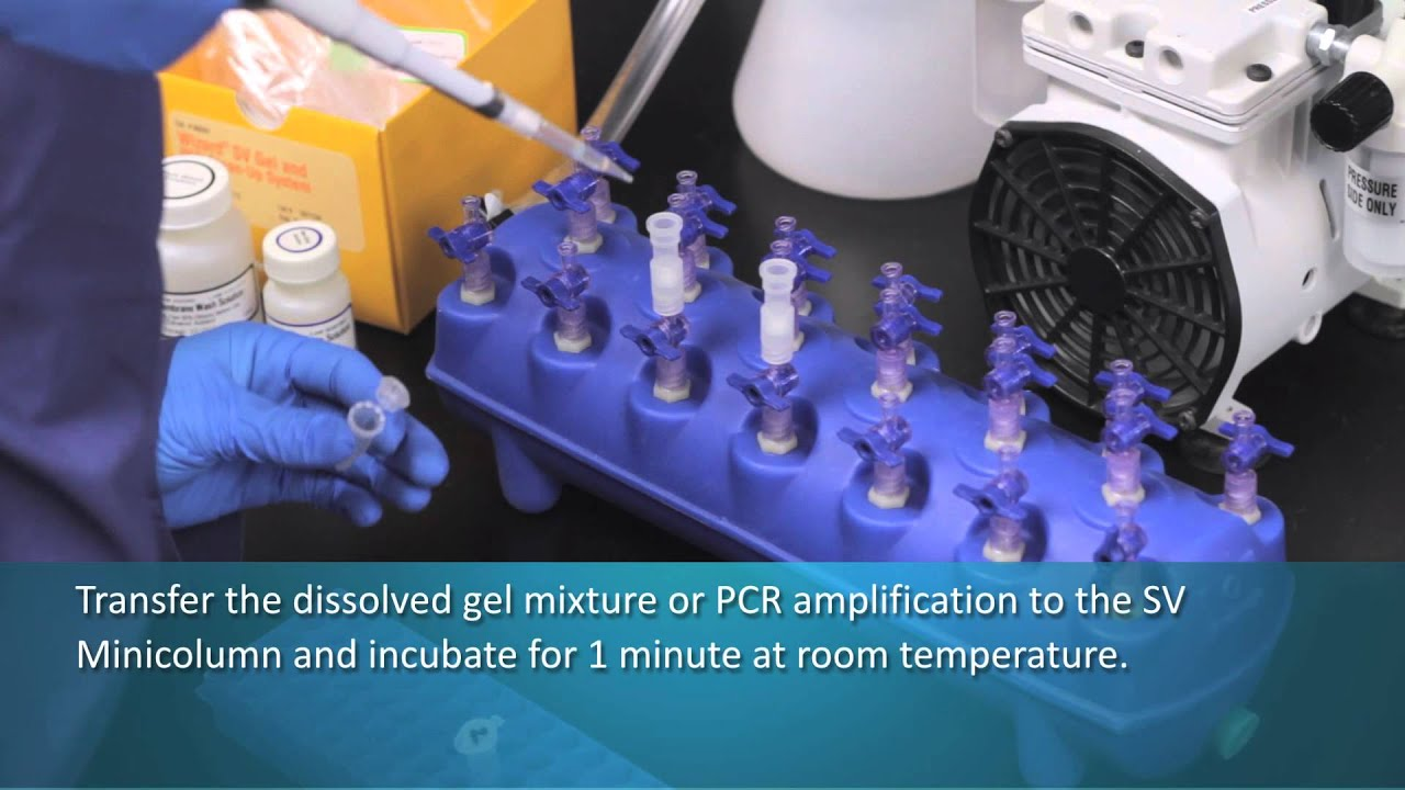 Wizard 174 Sv Gel And Pcr Cleanup System Vacuum