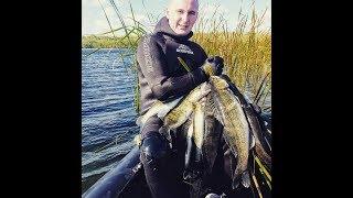 Подводная Охота Осенью много Крупного Судака