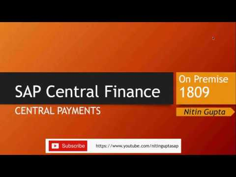 SAP Central Finance Central Payments