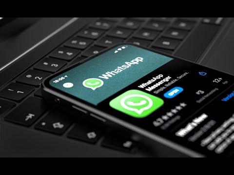 WhatsApp: única conta poderá ter até quatro dispositivos conectados