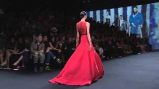 ♥ Christian Dior ♥ Haute Couture Fall Winter 2013 to 2014 Thumbnail