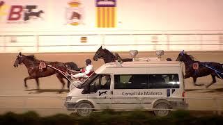 Vidéo de la course PMU PREMI AMIENS
