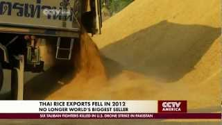 Export Lowering Government Subsidies Muffle Booming Thai Rice Production