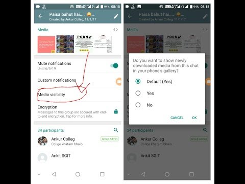 Media Visibility WhatsApp New Feature | How to Hide Your WhatApp Media From Your Gallery