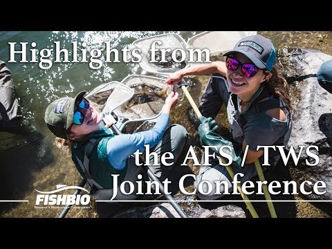 Highlights From The AFS/TWS Joint Conference