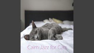 Jazz Calmante para Mascotas