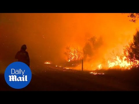 Australian fire services issue warning for Sydney wildfire - Daily Mail