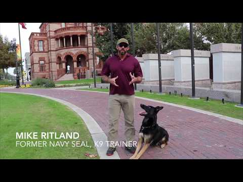 Mike Ritland's Team Dog Online Training
