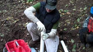 Let The Hunt Begin Off Grid Chanterelle Mushrooms