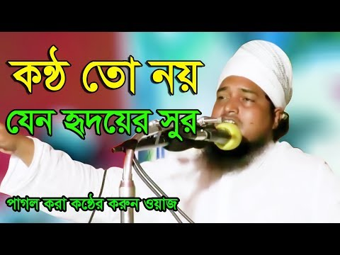 Bangla Waz 2017 Maulana Farhad Uddin Ayubi New Bangla Waz Mahfil 2017