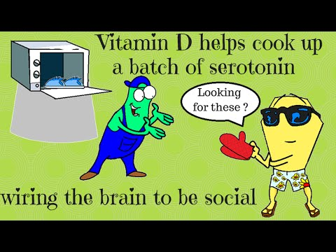 The connection between vitamin D and autism