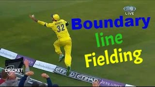 Top Cricket Fieldings In Cricket History (Updated 2016) Best Fielding 2016