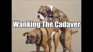 Wanking the Cadaver - Homosexual Mafia