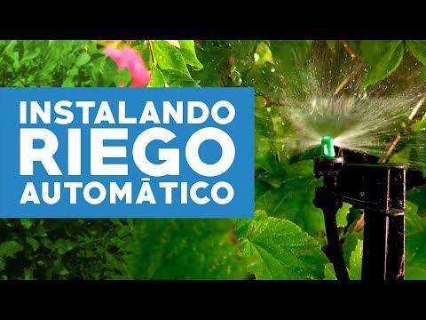 ¿Cómo instalar riego automático en el jardín?