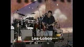 Watch Los Lobos Bertha video