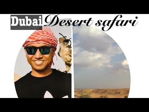Dubai desert safari and camel ride | Anar Nipa Uk Vlogs