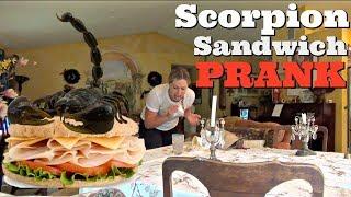 REAL SCORPION SANDWICH PRANK - Top Husband Vs Wife Pranks Of 2017