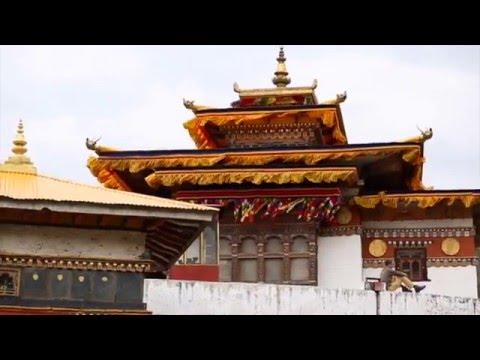 Study Abroad Bhutan: A Visual Pilgrimage