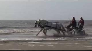 escapade sur la côte d'opale mpeg4 - un DVD dépaysant !!!!