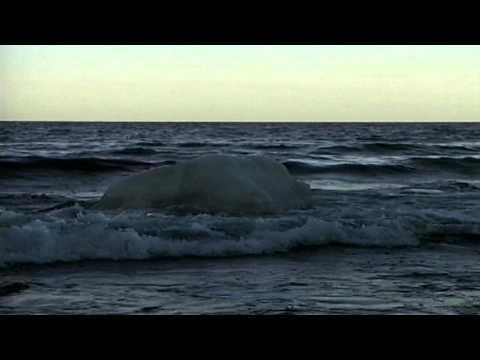 Marine World Heritage Sites