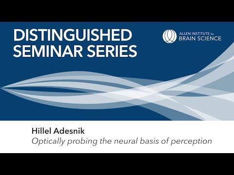 Hillel Adesnik | Allen Institute Distinguished Seminar Series