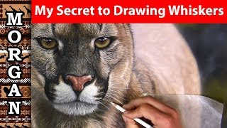 My SECRET to Drawing Whiskers with Pastel Pencils