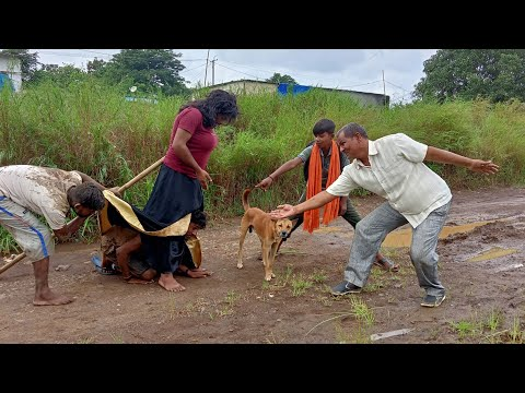 Download Must watch new Comedy video& new funny video 2021full entertainment bindas comedy video 2021