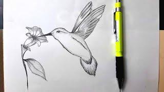 Çiçek Ve Kuş Çizimi - Flower  Bird Drawing