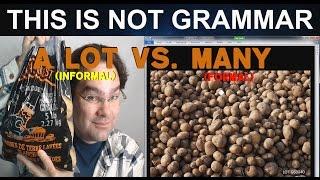 A Lot vs. Many Quantifiers in English Grammar Lesson The Nouns A Lot & Many English Grammar