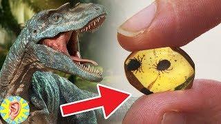 Dinozorlarla İlgili Öyle Bir Gelişme Yaşandı Ki... Canlanıyorlar mı?