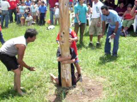 Palo Encebado Juegos Tradicionales Tres Rios Costa Rica Parte 1