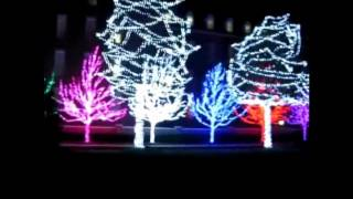 Гирлянды на деревья(Светодиодные уличные гирлянды на деревья. Подробности: http://новогодний-гипермаркет.рф/index.php?route=product/category&path=1..., 2012-12-01T09:52:09.000Z)