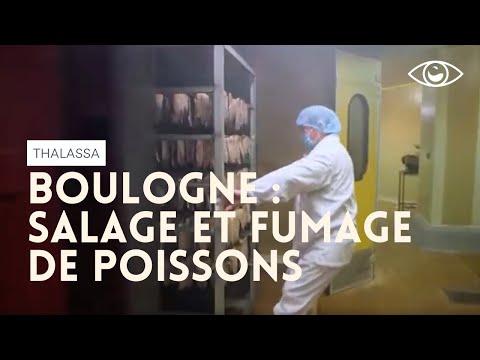 Dans le ventre de Boulogne - Thalassa (reportage complet)