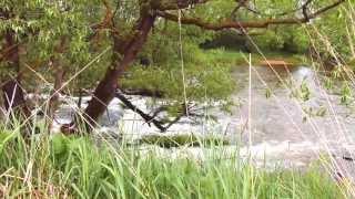 Активный тур выходного дня - река Киржач (4K)