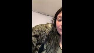 Cat Affectionately Rubs Itself Against Owner Shoulder