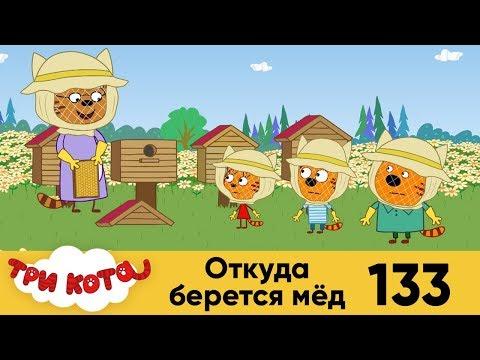 Три кота | Серия 133 | Откуда берется мёд