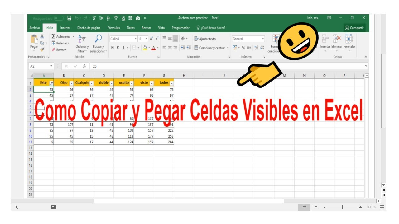 Copiar Y Pegar Celdas Visibles En Excel Youtube