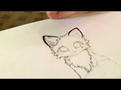 Dessin Renard Blanc Et Noir Yuki Youtube