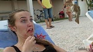 смешные видео # 092 / инцидентов / несчастных случаев / смех / шутки / юмор